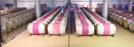 Barrel of wine, cellar, Kanonkop, Stellenbosch, Western Cape, South Africa Stock Photo