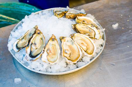 ostra: Placa de las ostras en un mercado de Niza, Francia