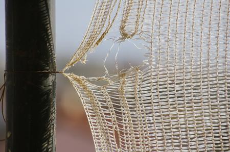 weak: Netting, with a weak, broken string