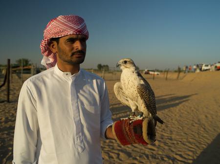 tame: NOV 30 -DUBAI, UAE: bedouin Arab with a tame falcon posing for the tourists on the 30 of november 2013 in Dubai,UAE