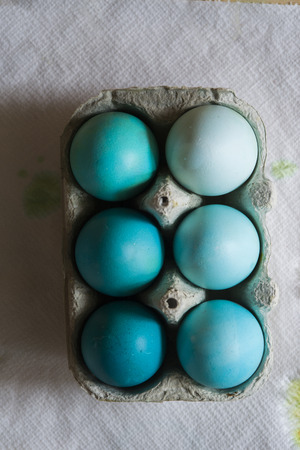 Dyeing eggs for Easter holidays, colored eggs with blue tint and different tonality ainside a package over a gray concrete background
