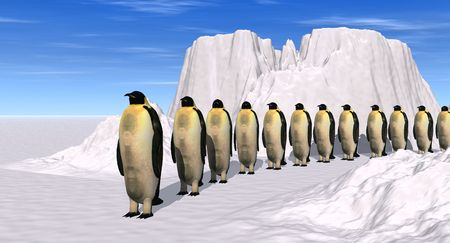 penguins walking Stock Photo