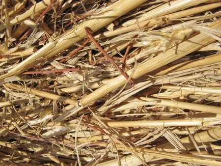 hayroll: a close up view of a hayroll texture
