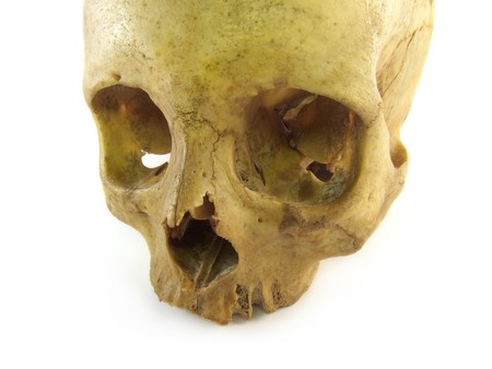a close-up image of an isolated skull photo