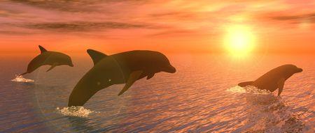 Ilustración mostrando algunos delfines jugando al atardecer