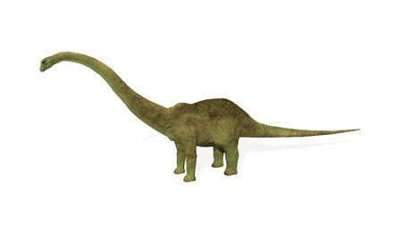 sauropod: 3D hacen de un dinosaurio diplodocus aislados