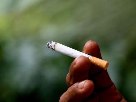 Male fingers holding a burning cigarette, close up shot Imagens