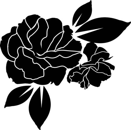 rose black and white wallpaper or textile clean design Illustration