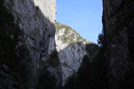 Carpathian Montain rock in Romania , Bicaz Chei, Pine forest 版權商用圖片 - 156668717