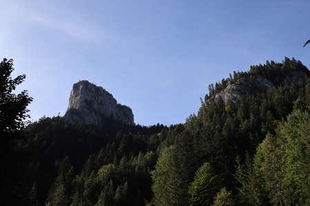 Carpathian Montain rock in Romania , Bicaz Chei, Pine forest 版權商用圖片 - 156641416