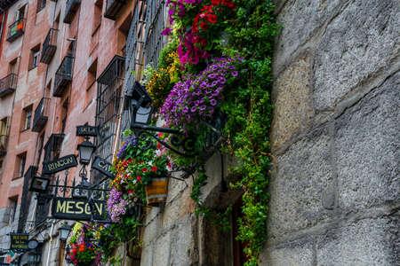 Wall flowers along  restaurant row at Cava de San Miguel Madrid, Spain