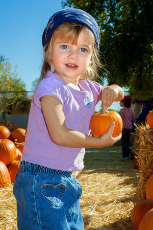bandana girl: A small girl holds a tiny pumpkin while standing in a pumpkin patch.  She has a blue bandana on her head.
