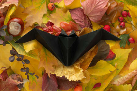 Natural foliage background with yellow red and green fallen off leaves, chestnuts, berries and black origami bat. Minimal autumn flat lay pattern with copy space. Fall note card Halloween concept.