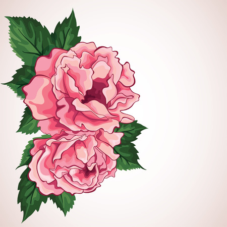 Beauty  peony  Wedding card  Card for Mothers Day