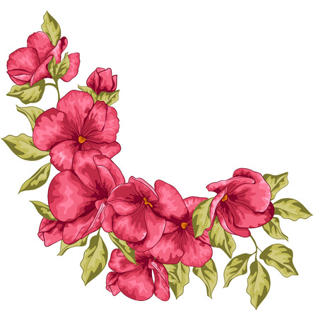 geranium: Invitation card with flowers for design Illustration