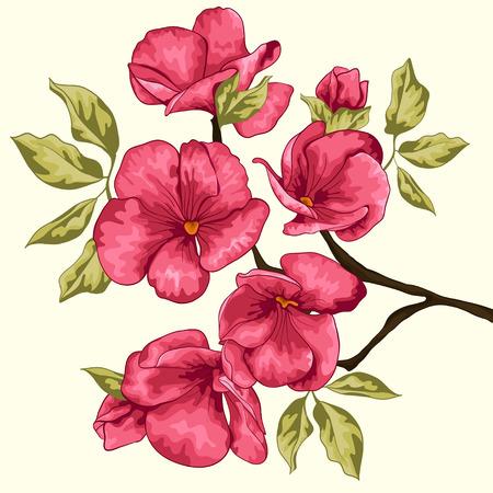 분홍색 꽃 초대 카드 벡터 일러스트 레이 션 벚꽃 사쿠라 꽃 꽃 배경 봄 꽃 배경 꽃 나무 지점