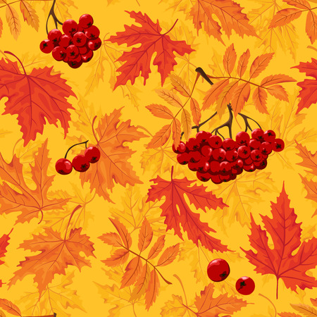 Seamless pattern  Autumn background