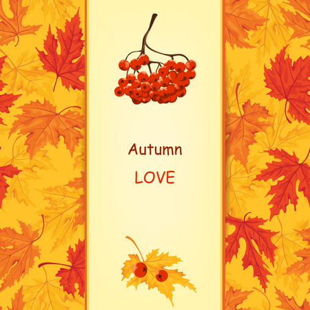 ashberry: Autumn card with ashberry and maple leaf