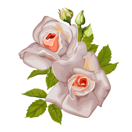 Bouquet of roses with leaves for holidays
