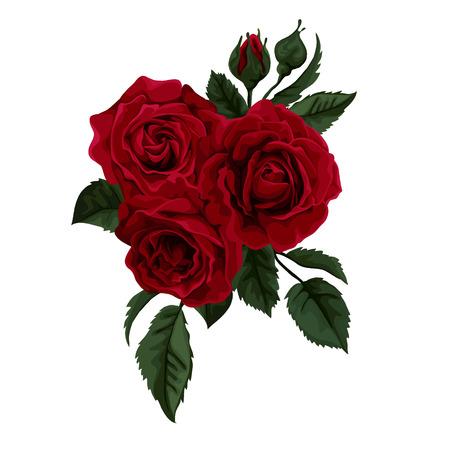 Schöne Strauß Rosen auf weißem Hintergrund. Perfekt für Hintergrund-Grußkarten und Einladungen der Hochzeit, Geburtstag, Valentinstag \ Vektorgrafik