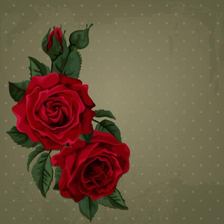 빈티지 빨간 장미. 폴카 도트 배경입니다.