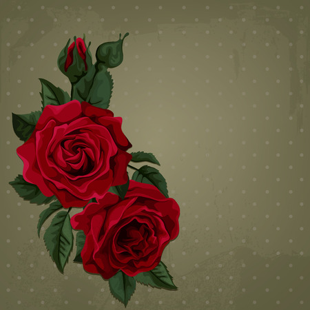 Vintage red roses. Background with polka dot. Vector