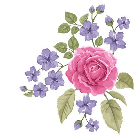 아름다운 장미, 화이트에 격리 일러스트