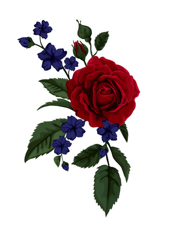 Beautiful red rose isolated on white Illustration