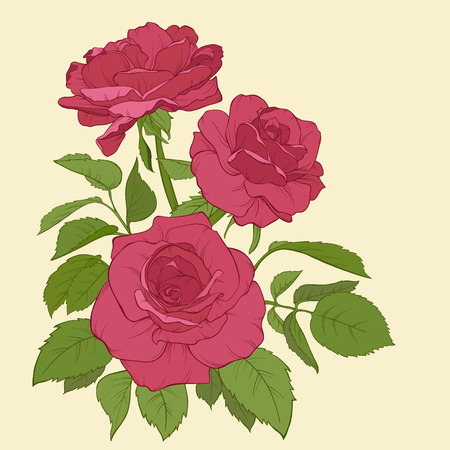 single rose: Blossoming roses with spring flowers on white. Vector illustration. Perfect for background greeting cards and invitations of the wedding, birthday, Valentine\\\\\\\\\\\\\\\\\\\\\\\\\\\\\\\\\\\\\\\\\\\\\\\\\