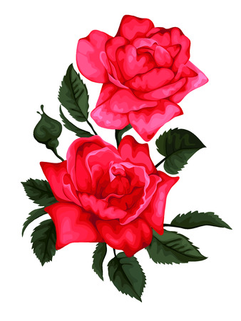 Two red roses. Perfect for background greeting cards and invitations of the wedding, birthday, Valentines Day, Mothers Day.