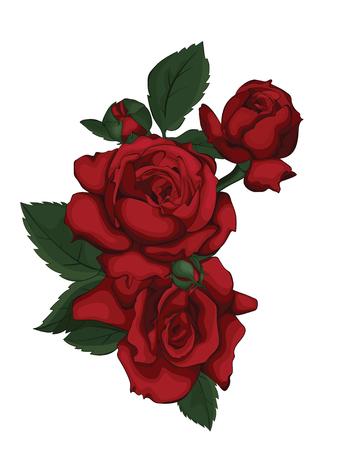 Rose aislado en blanco hermoso. Rosa roja. Perfecto para tarjetas de felicitación de fondo e invitaciones de la boda, cumpleaños, día de San Valentín, día de la madre. Amor.