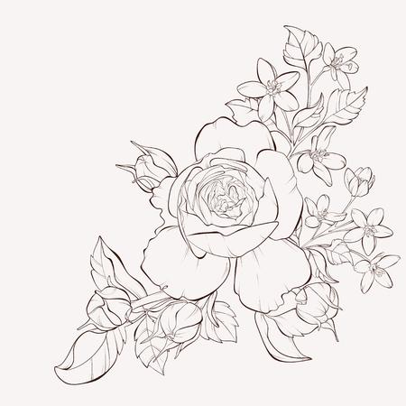 Vector flor color de rosa con flores silvestres. Elemento de diseño. Trazos y curvas de nivel dibujadas a mano. Perfecto para tarjetas de felicitación de fondo e invitaciones de la boda, cumpleaños, día de San Valentín, día de la madre. Ilustración de vector