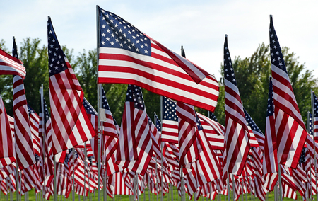 11th: Field of American Flags Stock Photo