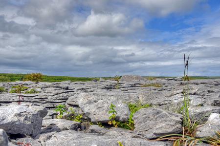 Limestone Field in the Burren, Ireland. Stock Photo