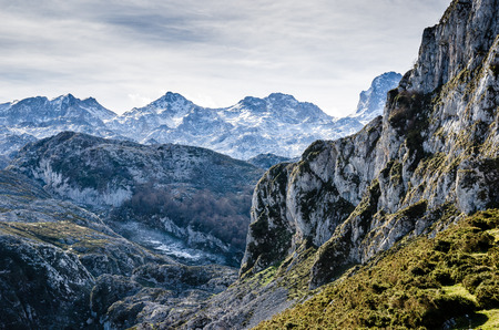 Picos de Europa, Asturias. Sharp mountains covered by snow with a beautiful natural light and some grass