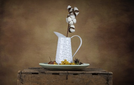Vintage still life with jug and branch of cotton