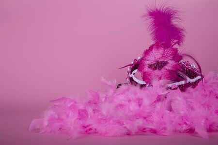 Fuchsia Venetian mask on a pink boa and fuchsia background.