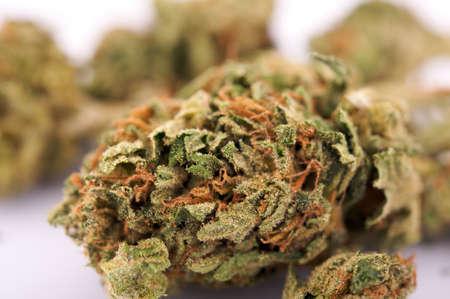hemp: Marihuana Lizenzfreie Bilder