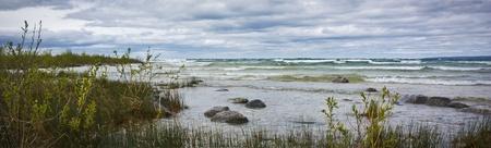 Windy Shoreline