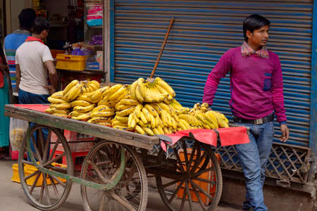 abound: DELHI, INDIA - FEB 8, 2014  Sellers of bananas with their carts, abound in the streets of Old Delhi  Editorial