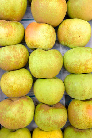 russet: Apple Branley, for sale in a market. Stock Photo