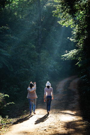 forest trail: Two girls walking in forest trail.