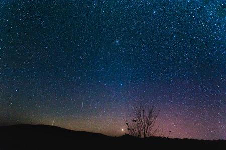starry night: Starry night sky background.