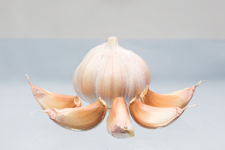 Fresh garlic isolate on white background.