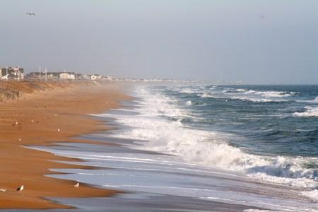 Ocean Living