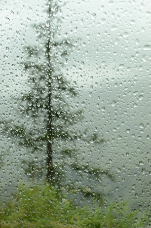 drizzling rain: raindrops on car window in forest and mountains