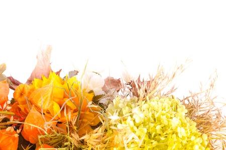 cape gooseberry: Autumn bouquet. Dried flowers and cape gooseberry