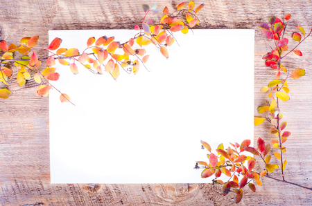 pensil: Colorful autumn leaves pensil lying on diary, notebook, paper, wooden background. Fall and thanksgiving. Autumn composition. Free space for text.