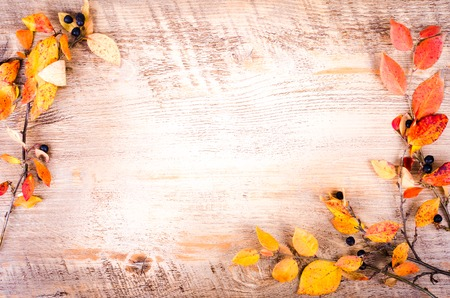 dry leaves: Colorful autumn leaves lying on wooden background. Fall and thanksgiving. Autumn composition. Free space for text. Stock Photo