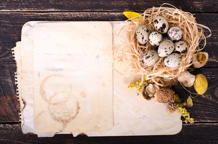 quail nest: Quail nest with spotted eggs, dried plants and vintage paper on a wooden  background. Free space for your text.